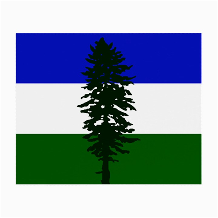 Flag of Cascadia Small Glasses Cloth (2-Side)