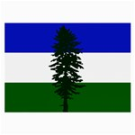 Flag of Cascadia Large Glasses Cloth (2-Side) Front