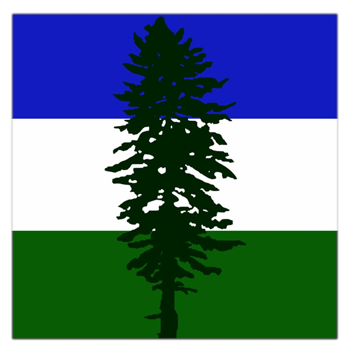 Flag of Cascadia Large Satin Scarf (Square)