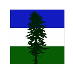 Flag Of Cascadia Small Satin Scarf (square)