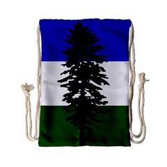Flag Of Cascadia Drawstring Bag (small)