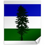 Flag of Cascadia Canvas 20  x 24   24 x20 Canvas - 1
