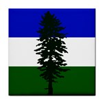 Flag of Cascadia Face Towel Front