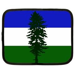 Flag Of Cascadia Netbook Case (large)