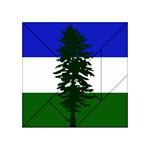 Flag of Cascadia Acrylic Tangram Puzzle (4  x 4 ) Front