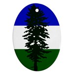 Flag of Cascadia Oval Ornament (Two Sides) Back