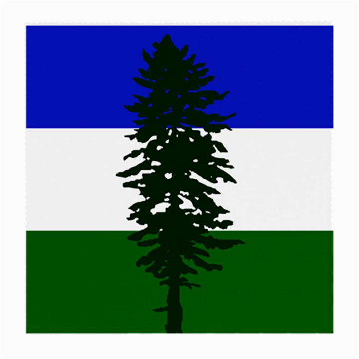 Flag of Cascadia Medium Glasses Cloth (2-Side)