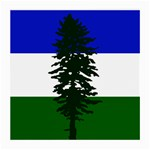 Flag of Cascadia Medium Glasses Cloth (2-Side) Back