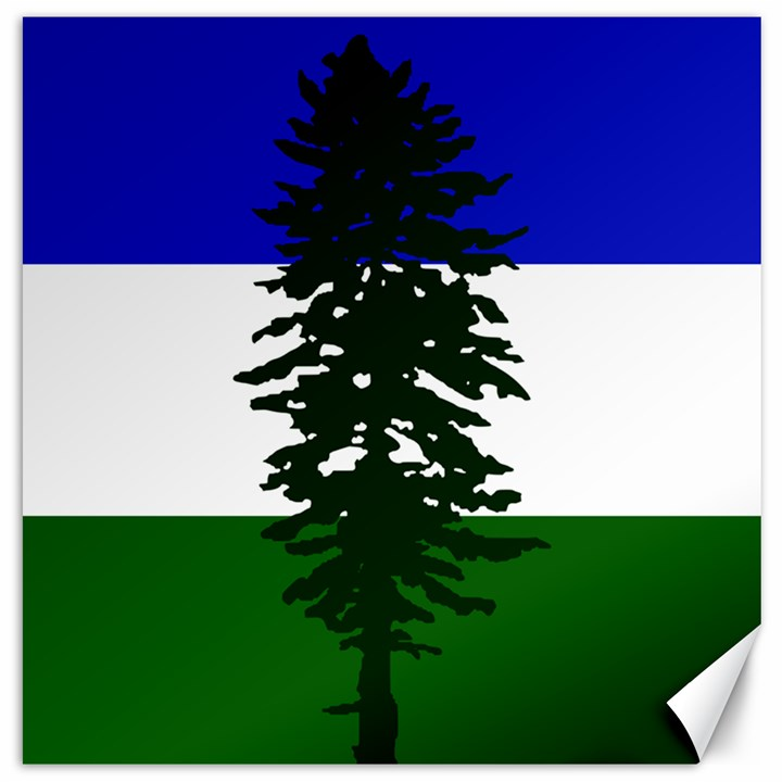 Flag of Cascadia Canvas 16  x 16