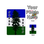 Flag of Cascadia Playing Cards 54 (Mini)  Front - Joker1