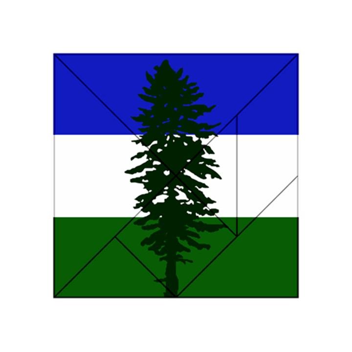 Flag of Cascadia Acrylic Tangram Puzzle (4  x 4 )