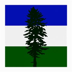 Flag Of Cascadia Medium Glasses Cloth (2 Side)