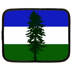 Flag Of Cascadia Netbook Case (xxl)