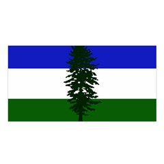 Flag Of Cascadia Satin Shawl