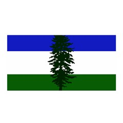 Flag Of Cascadia Satin Wrap