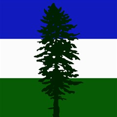 Flag 0f Cascadia Canvas 12  X 12
