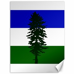 Flag 0f Cascadia Canvas 36  X 48