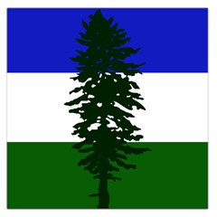 Flag 0f Cascadia Large Satin Scarf (square)