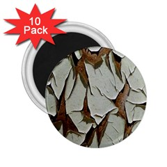 Dry Nature Pattern Background 2 25  Magnets (10 Pack)