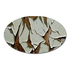 Dry Nature Pattern Background Oval Magnet