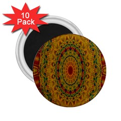 India Mystic Background Ornamental 2 25  Magnets (10 Pack)
