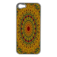 India Mystic Background Ornamental Apple Iphone 5 Case (silver)