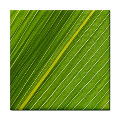 Leaf Plant Nature Pattern Tile Coasters