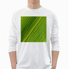 Leaf Plant Nature Pattern White Long Sleeve T Shirts