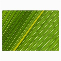 Leaf Plant Nature Pattern Large Glasses Cloth