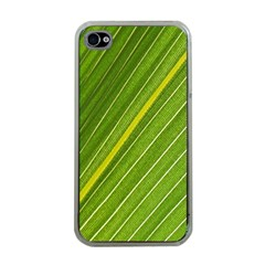 Leaf Plant Nature Pattern Apple Iphone 4 Case (clear)