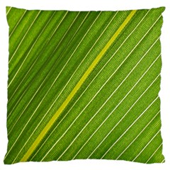 Leaf Plant Nature Pattern Large Cushion Case (two Sides)