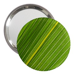 Leaf Plant Nature Pattern 3  Handbag Mirrors
