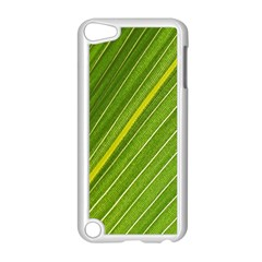 Leaf Plant Nature Pattern Apple Ipod Touch 5 Case (white)