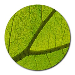 Green Leaf Plant Nature Structure Round Mousepads