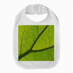 Green Leaf Plant Nature Structure Amazon Fire Phone