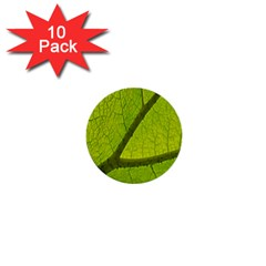 Green Leaf Plant Nature Structure 1  Mini Buttons (10 Pack)