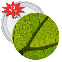 Green Leaf Plant Nature Structure 3  Buttons (10 Pack)