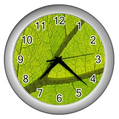 Green Leaf Plant Nature Structure Wall Clocks (silver)
