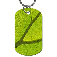 Green Leaf Plant Nature Structure Dog Tag (two Sides)