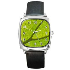 Green Leaf Plant Nature Structure Square Metal Watch