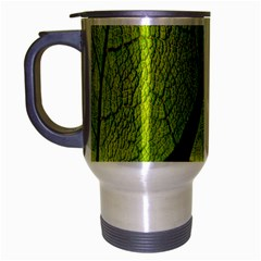 Green Leaf Plant Nature Structure Travel Mug (silver Gray)