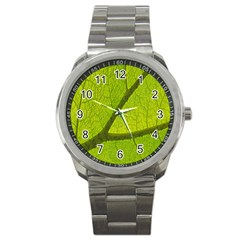 Green Leaf Plant Nature Structure Sport Metal Watch
