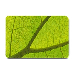 Green Leaf Plant Nature Structure Small Doormat