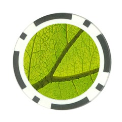 Green Leaf Plant Nature Structure Poker Chip Card Guard