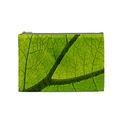 Green Leaf Plant Nature Structure Cosmetic Bag (medium)