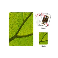 Green Leaf Plant Nature Structure Playing Cards (mini)