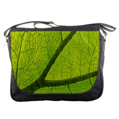 Green Leaf Plant Nature Structure Messenger Bags