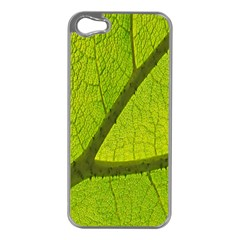 Green Leaf Plant Nature Structure Apple Iphone 5 Case (silver)