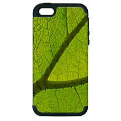 Green Leaf Plant Nature Structure Apple Iphone 5 Hardshell Case (pc+silicone)