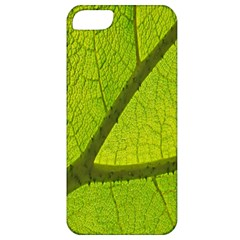 Green Leaf Plant Nature Structure Apple Iphone 5 Classic Hardshell Case